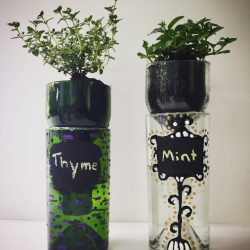 Recycled wine bottle herb planters